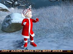 Snow Maiden Gnome Full Bento Avatar_7