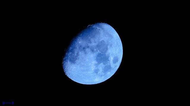 #Moon This Night - 9118