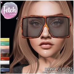 [Fetch] Diana Glasses @ Uber!