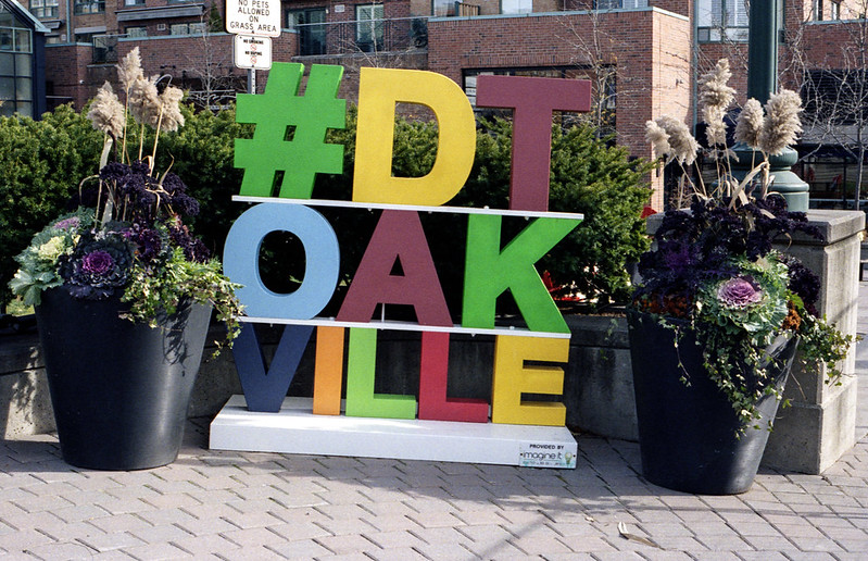 DTOAKVILLE Hashtag November 2020