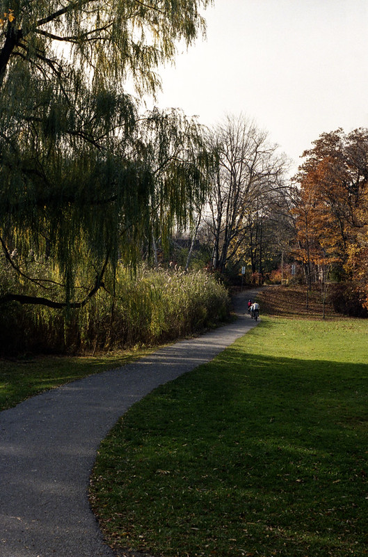 Pinewood Park Crossing Path