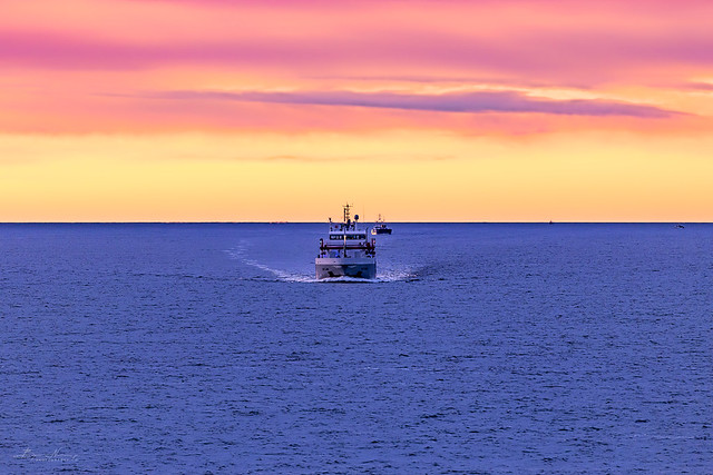 the Oslofjord freighter race (Explored)