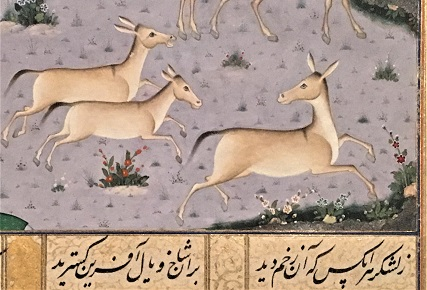 Three onagers (wild asses) run in a rightward direction across a plain that is dotted with stylized flowers. The onager in the lead looks back over its shoulder at the other two, and the rearward onager opens its mouth as if braying aloud. Below them, a verse of Persian poetry is written in black ink on a golden background.