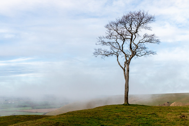 Standing alone in the mists of time?