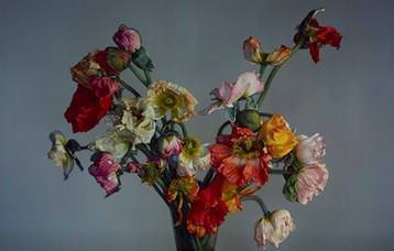 richard-learoyd-large-poppies-thumb
