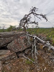 Åland | Getabergen Nature Path