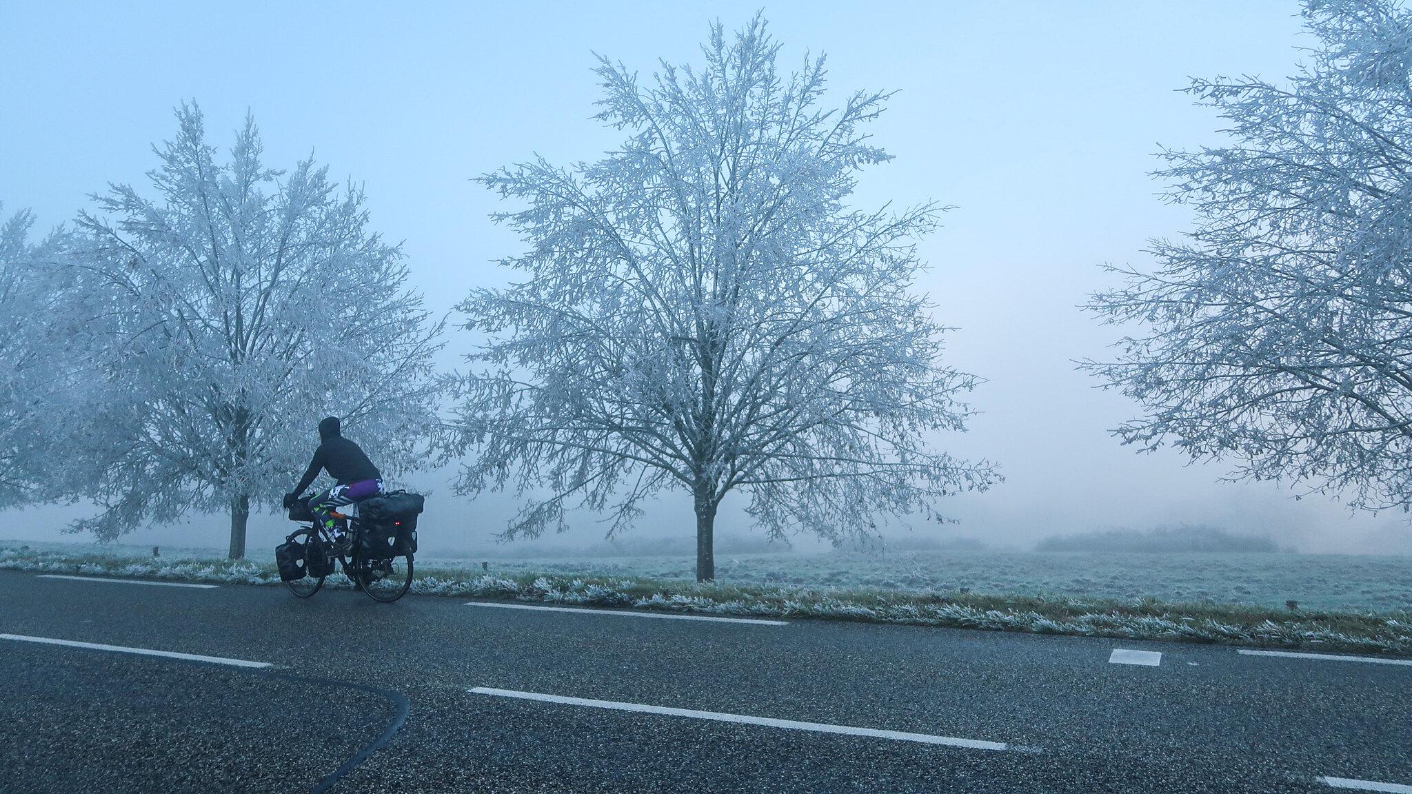 On the misty roads