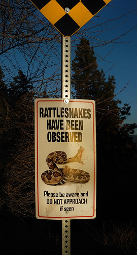Rattlesnake Warning Sign near the Mission Hill Winery in West Kelowna, in BC's Okanogan wine country, Canada