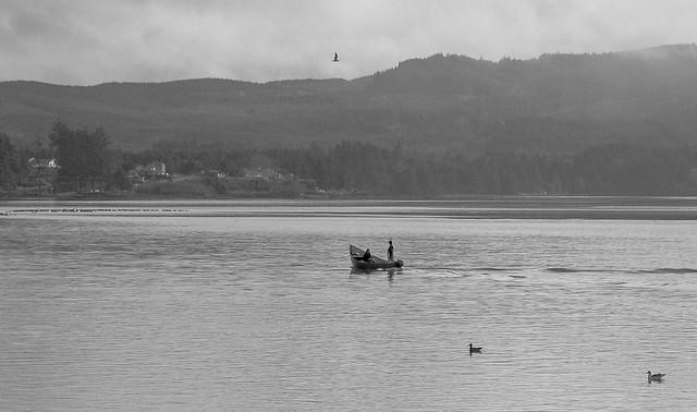 Clam Waters Netarts Bay, Oregon