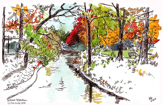UC Davis Arboretum