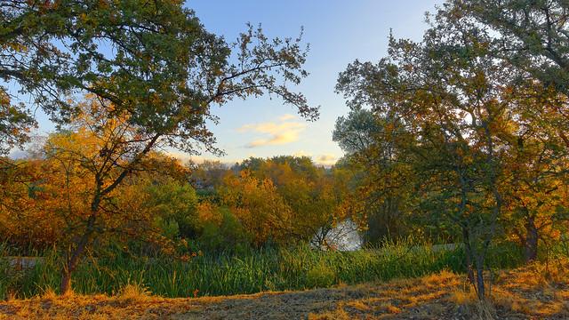 Golden Hour near Heather Farm Pond