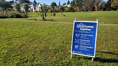 Socially Distant at Dolores Park :bridge_at_night: - Turkey Day SF Tour 2020