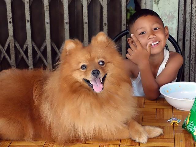 a happy dog and boy