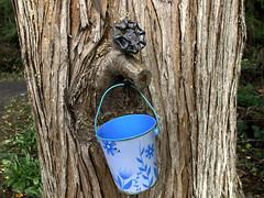 IMG_3133 bucket