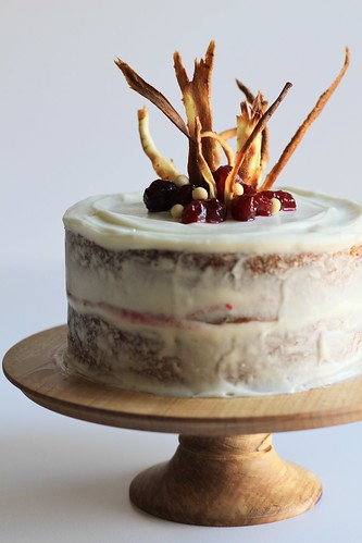 parsnip and cranberry cake | by awhiskandaspoon