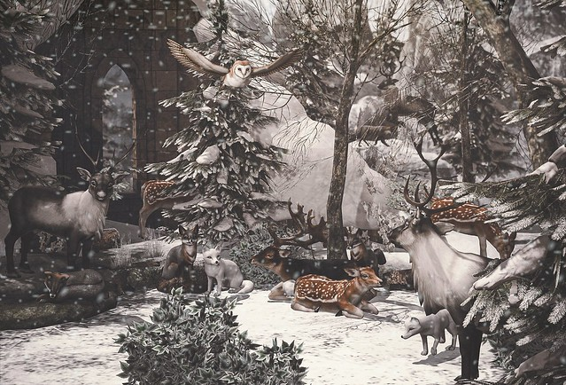 Gallant Magazine - First Snow Fall