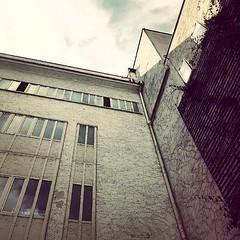 :sunrise_over_mountains: #Buongiorno Sapienza con una foto dell'Edificio di Design di via Flaminia 70 di @carolina_in_wonderland ・・・  Goodmorning from the via Flaminia Design Building ・・・ #Repost: «#nonsesmettemaidimparare» ・・・ #repostSapienza #ImmaginiDa