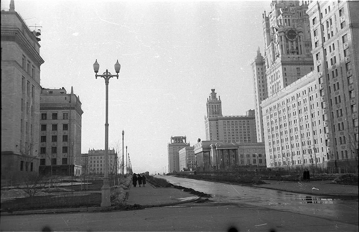 1950-е. На Ленинских горах. Здания университета