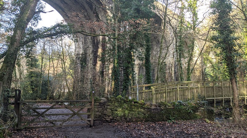 Fatherford Viaduct, Okehampton