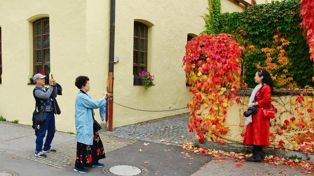 Freitag / Fotografen- Hobbyfotogrfen-Knipser Tag