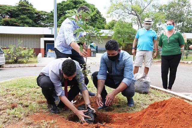 Projeto Jovem Senador - Plantio de árvore no CEM Paulo Freire