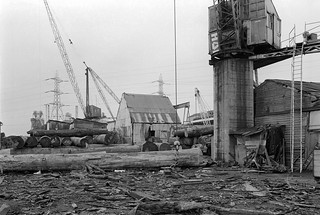Timber yard, Towpath Road, Dorford Wharf, Edmonton, 1983 34m-52_2400