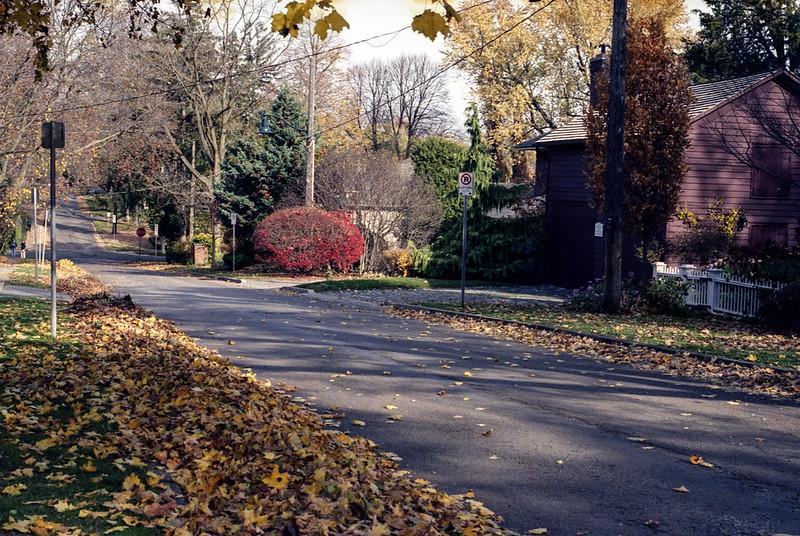 Peak Fall on King St._