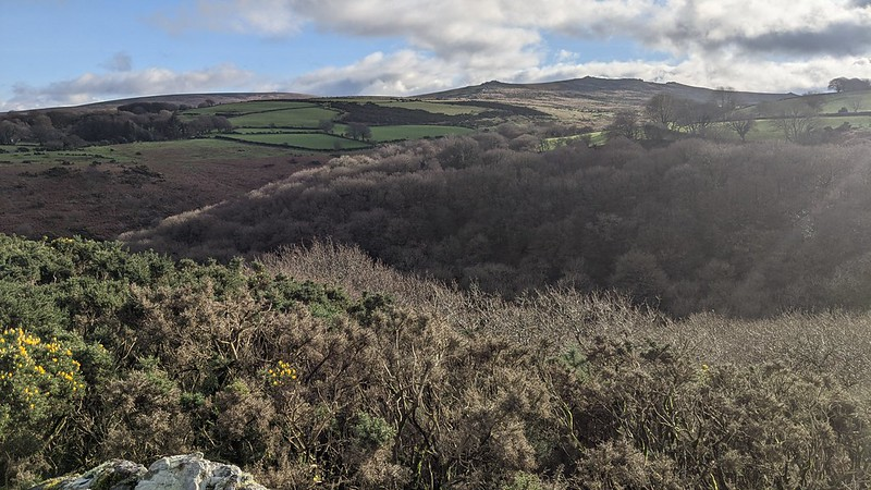 View from Ashbury Tor over Halstock Cleave