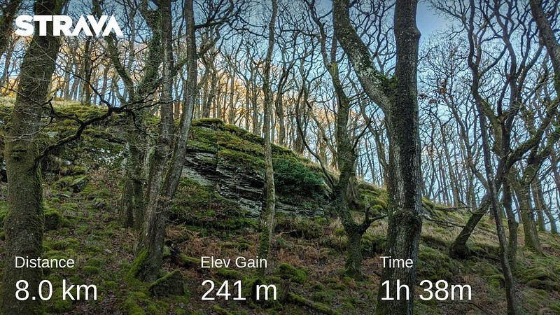 Halstock Cleave and East Hill Strava