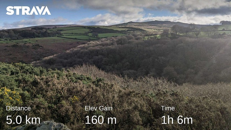 Ashbury Tor Lunch Circuit Strava