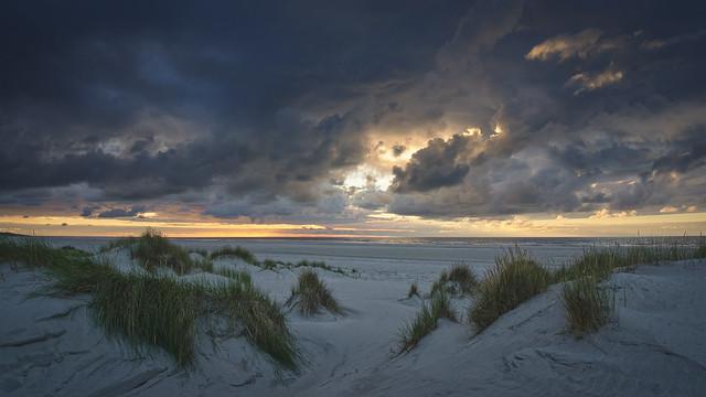 Nordic Dunes 2