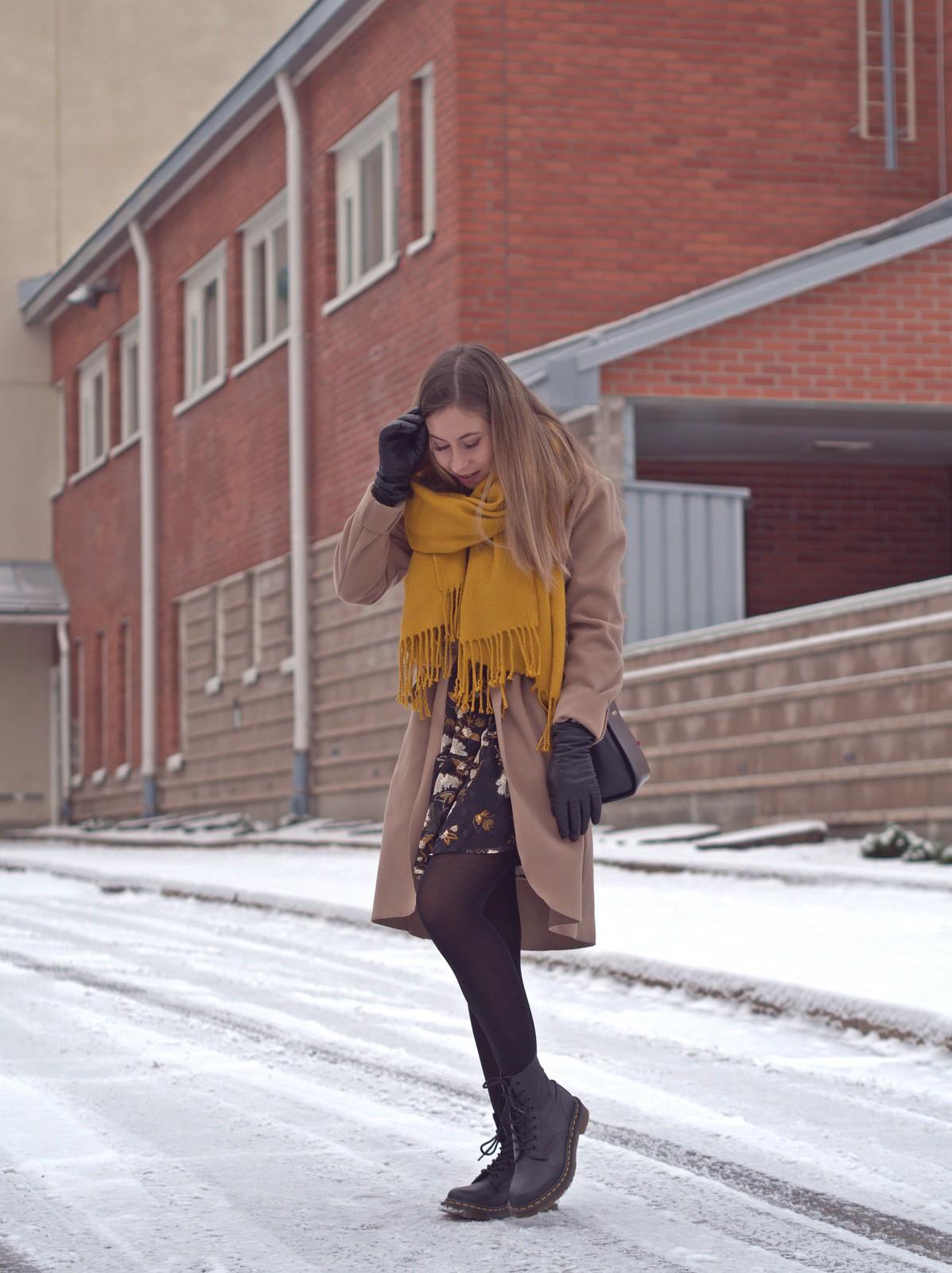 talvi asu