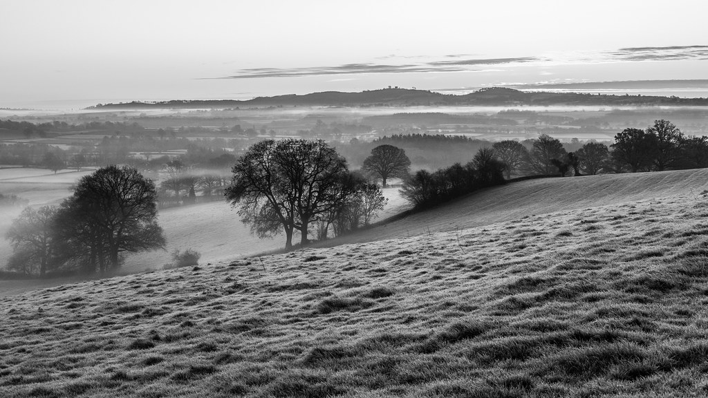 Black and white photo looking across a small field, past some winter trees, and down into a shallow valley bathed in mist