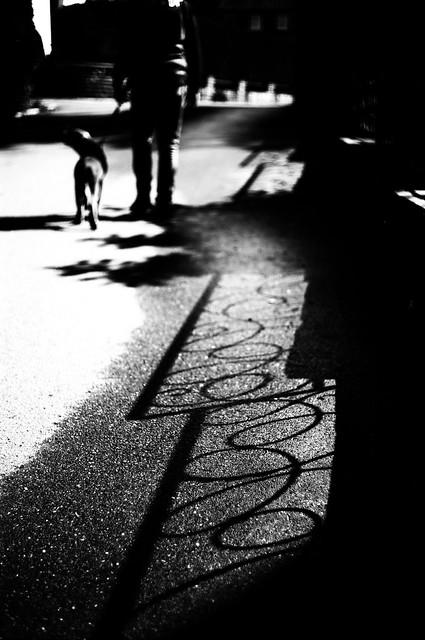 Shadow art (Leica M6)
