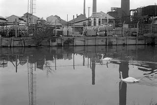 Lea Navigation, Brimsdown, Ponders End, 1983 34m-14_2400
