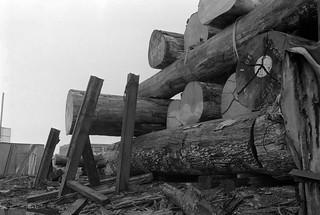 Timber yard, Towpath Road, Dorford Wharf, Edmonton, 1983 34m-61_2400