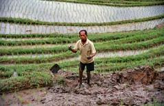 1997.01.08 Bali (34)