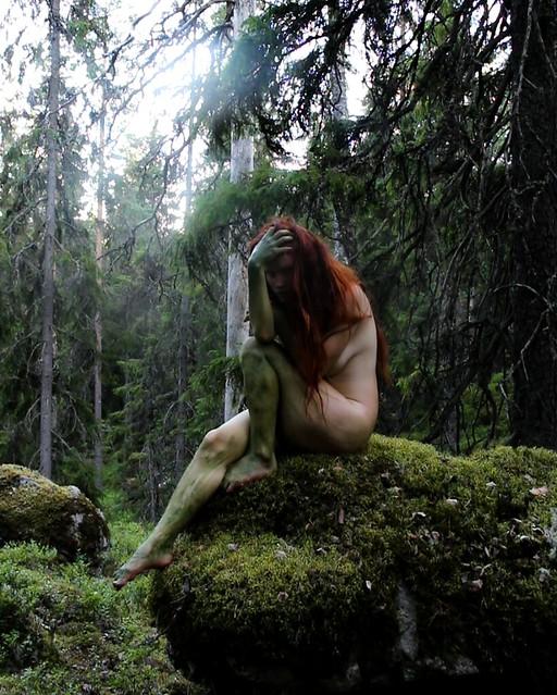 Forest adventures