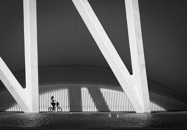 Cyclist Dreams