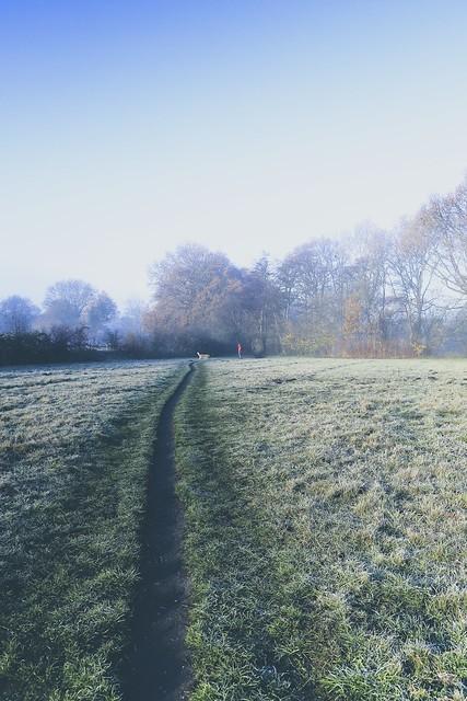 Nebel, Frost und (Ge-)fährten