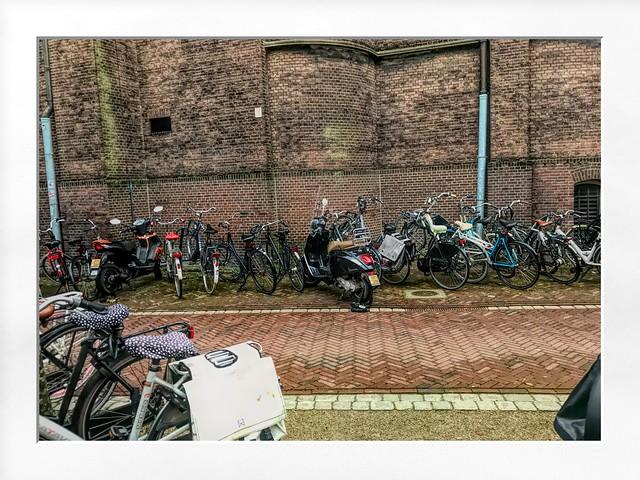 Druk in Leiden