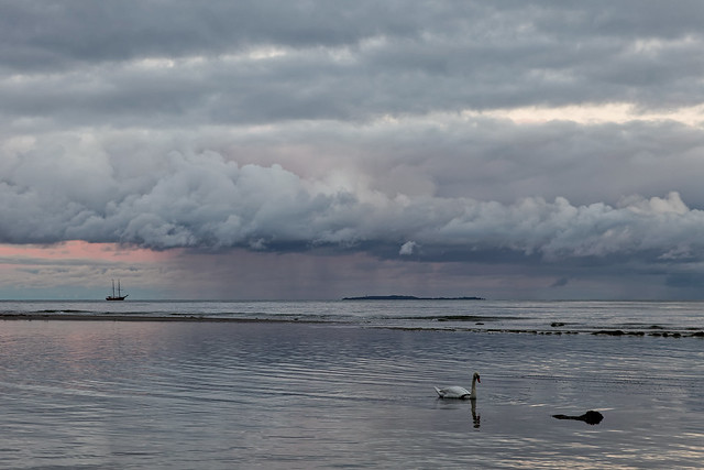 Zweimaster, Schwan, Insel, Regen, Sonnenuntergang, Wolken - unfassbar...