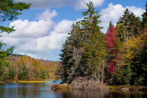 More New Hampshire color