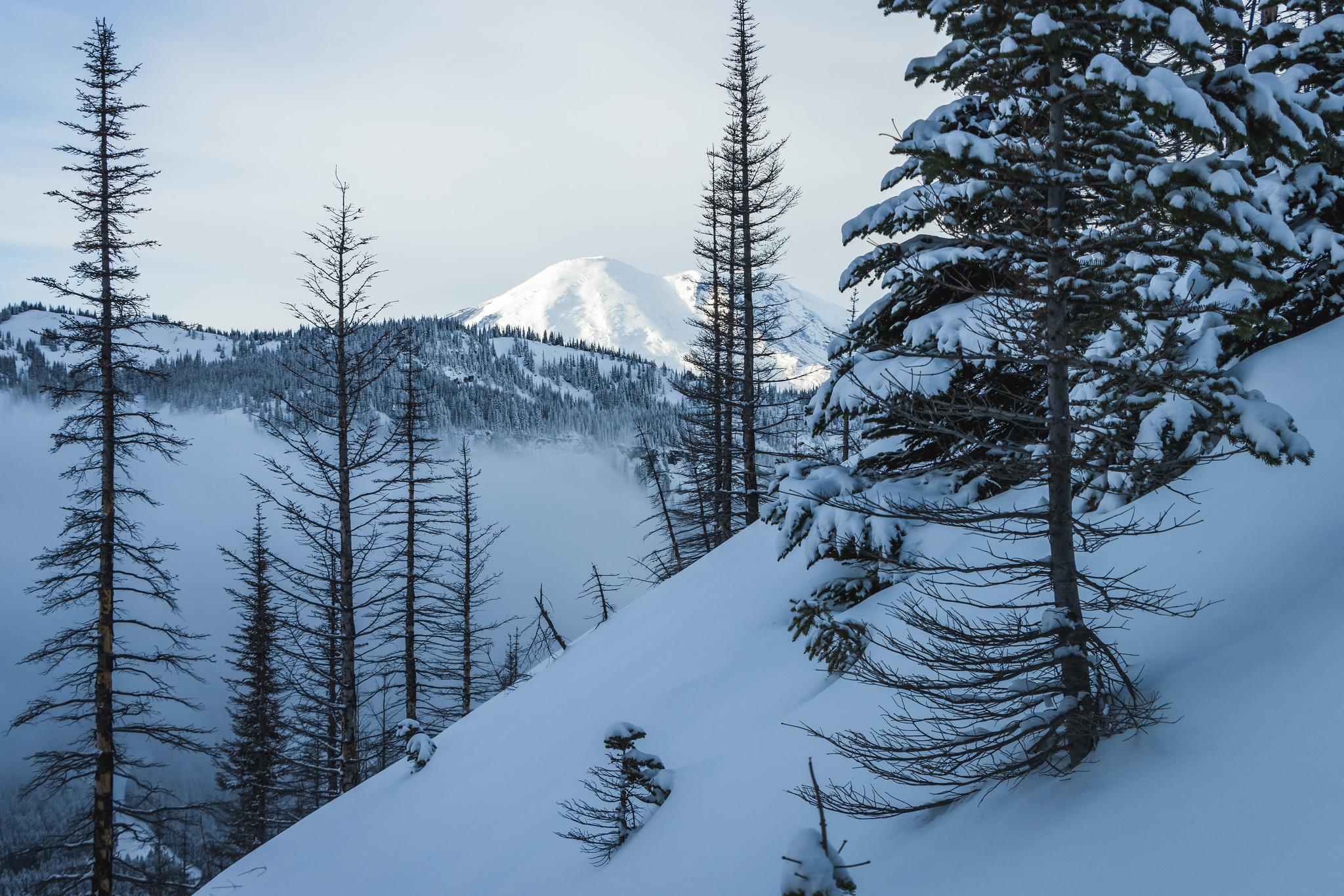 Mount Rainier making her entrance