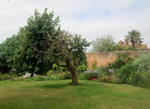 Garden, Lamb House, Rye