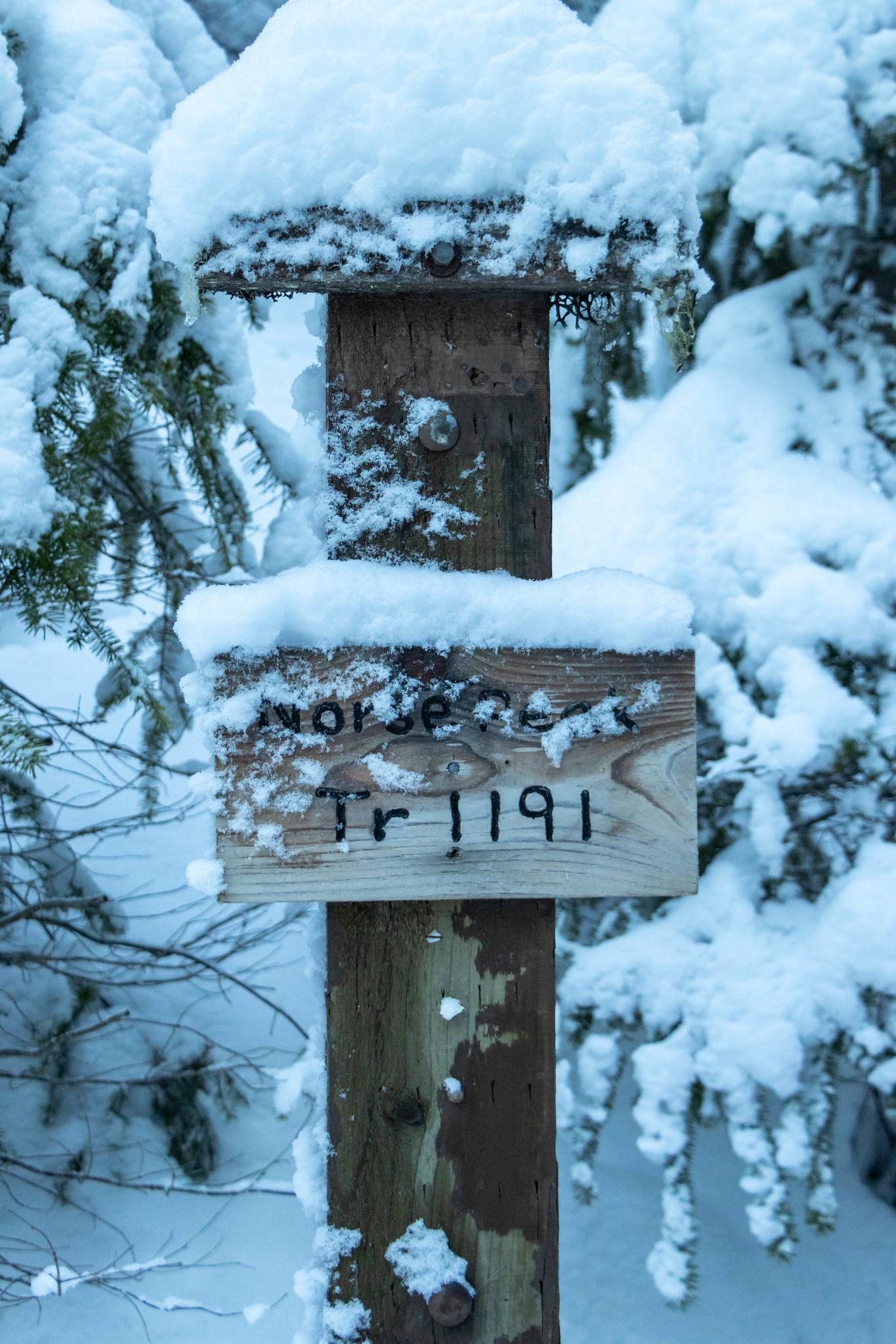 Norse Peak Trailhead