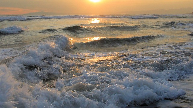 Evening Splash