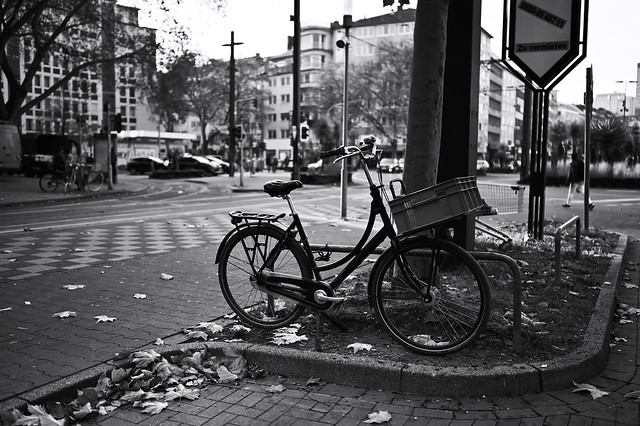 late autumn @ Düsseldorf, Germany 2