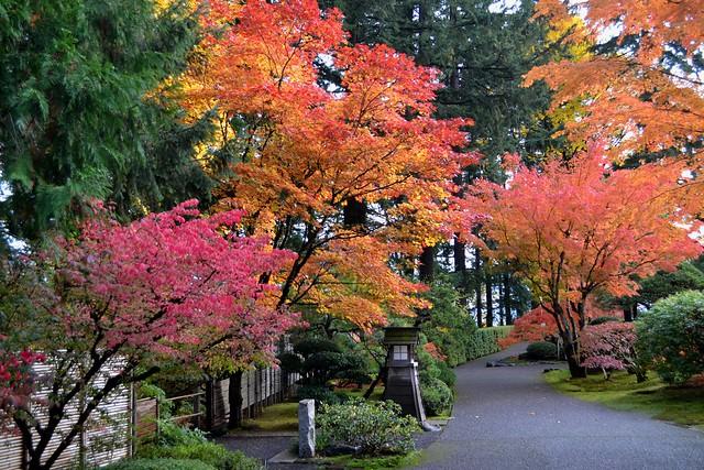 Walkway Color by Jim