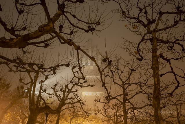 foggy evening in Darmstadt II